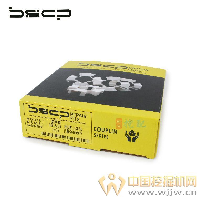 BS1903002(6).jpg